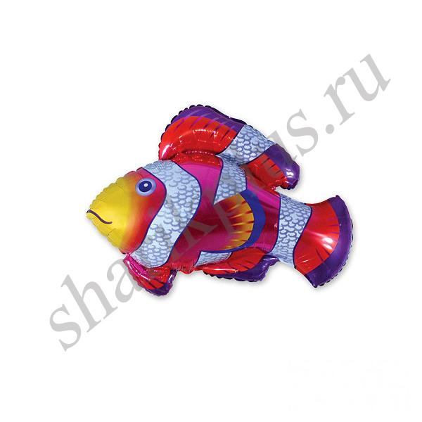 Ф ФИГУРА/11 Рыба пестрая красная(FM)